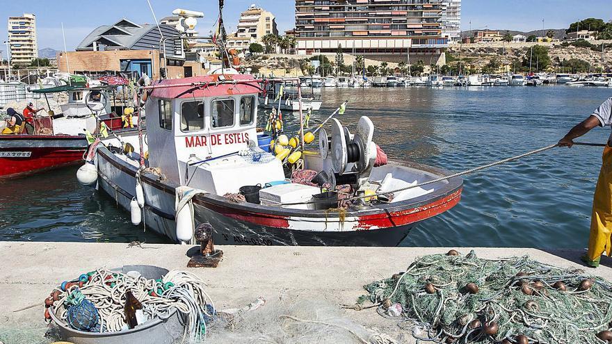 El Campello dispondrá en un año de una reserva marina de interés pesquero de 2.300 hectáreas