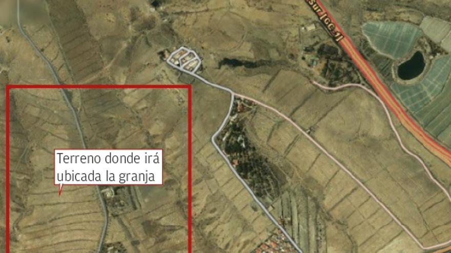 Una empresa construirá una granja  de aves y conejos en Pasito Blanco