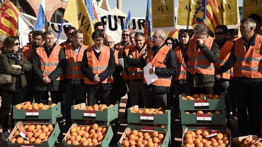 El sector citrícola exige un puerto único y más control a las importaciones