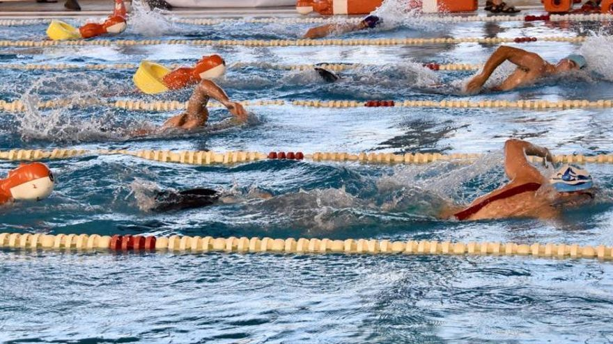 Torrevieja ofrece clases de natación gratuitas para la Tercera Edad