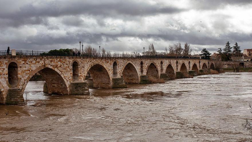 El Duero se pasa de la raya en Zamora