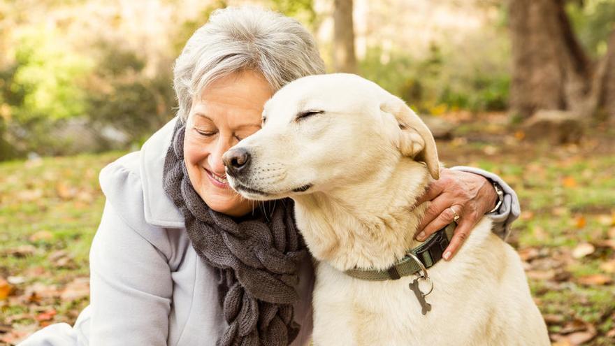 Las mascotas ayudan a los mayores a lidiar con problemas de salud