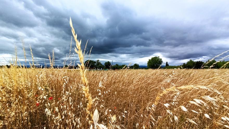 El tiempo en Castilla y León: Los termómetros continúan subiendo