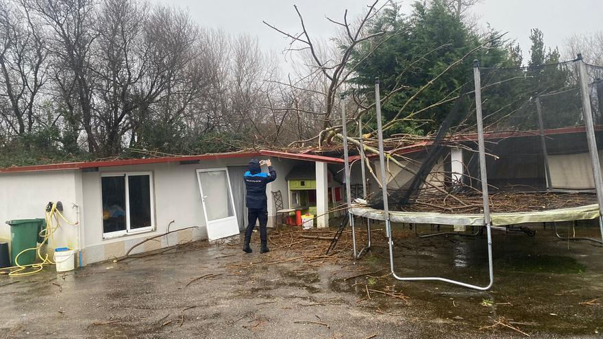 El temporal tira árboles  en Cangas y un particular alerta de la caída de un carro elevador en el puente de Rande