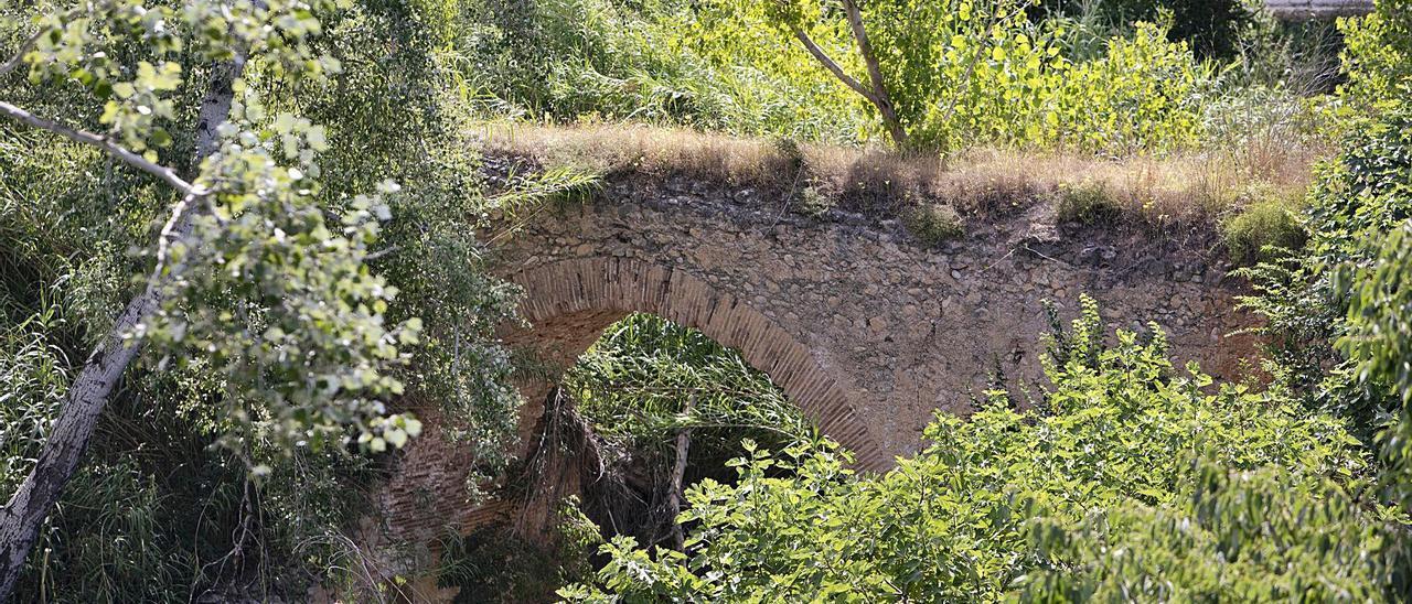 El dueño de un campo  cercano, debajo del puente  amenazado.  perales iborra