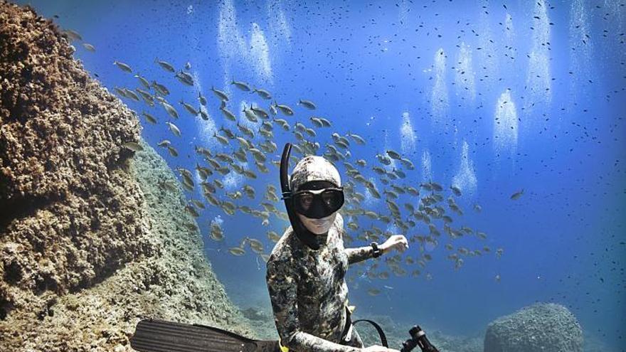 Die Unter-Wasser-Paparazzi von Mallorca