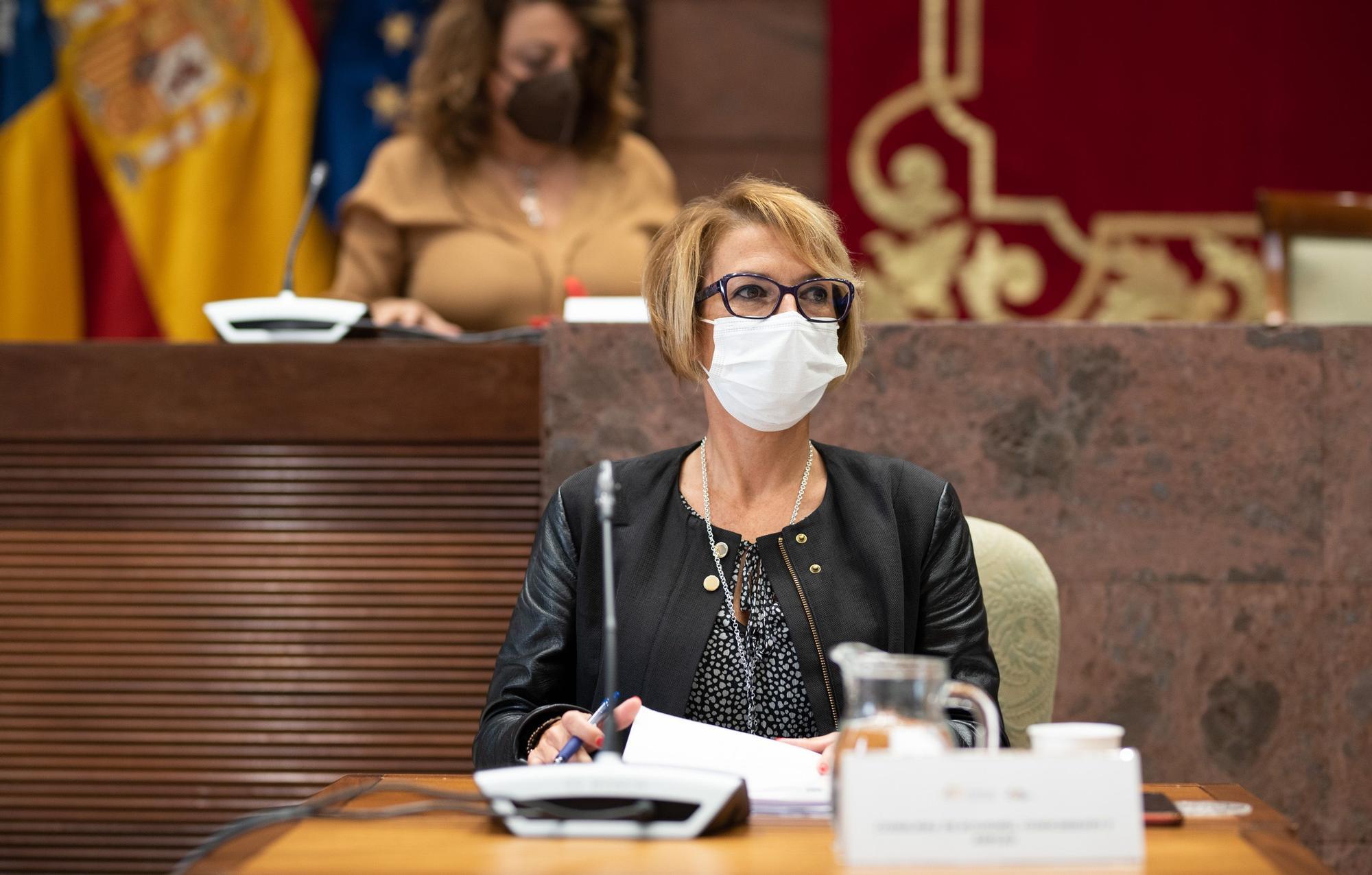 La consejera de Economía, Conocimiento y Empleo, Elena Máñez, comparece en comisión parlamentaria para hablar del plan de rescate a los sectores económicos ante el impacto de la covid-19.