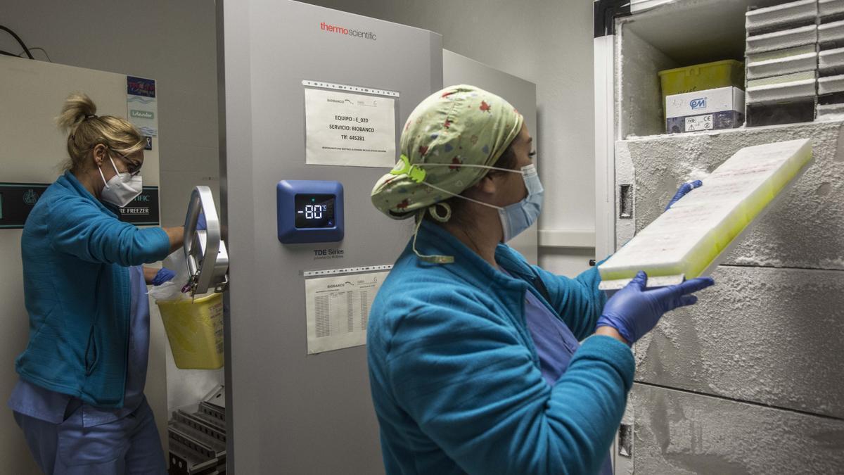 En el Biobanco del instituto Isabial, en el Hospital General, se guardan muestras a -80 grados.