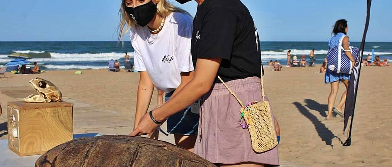 Actividad de concienciación sobre la tortuga en la playa de Xeraco. | LEVANTE-EMV