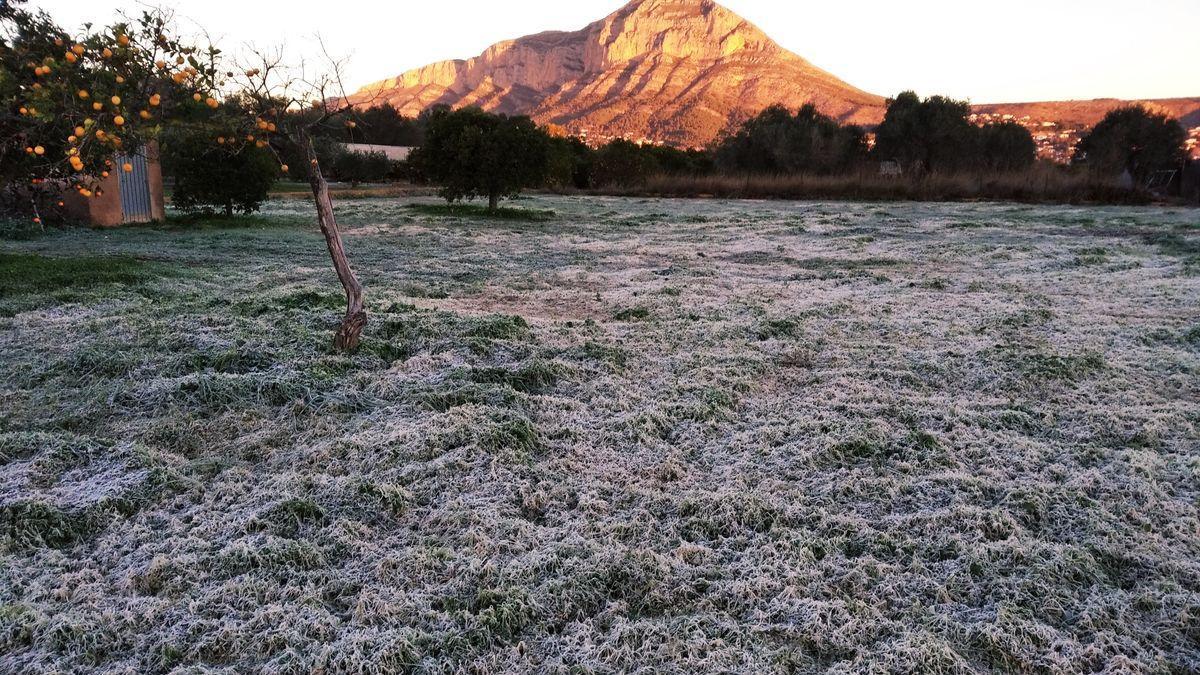 Un campo blanco y helado por la escarcha de la partida de Tarraula de Xàbia con el Montgó al fondo
