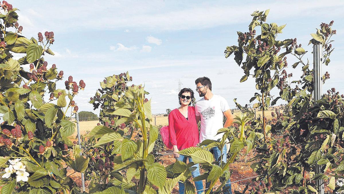 """Nuria Álvarez, con su marido, en lo que considera """"más que un proyecto empresarial, un proyecto de vida"""", en Almendra."""