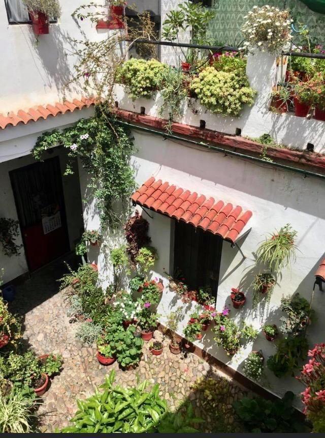Los patios de Córdoba, San Lorenzo San Rafael