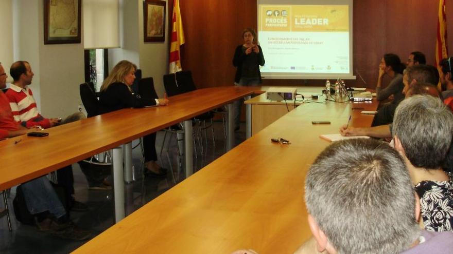 El fons Leader ofereix 640.000 euros a emprenedors de Cerdanya i Alt Urgell
