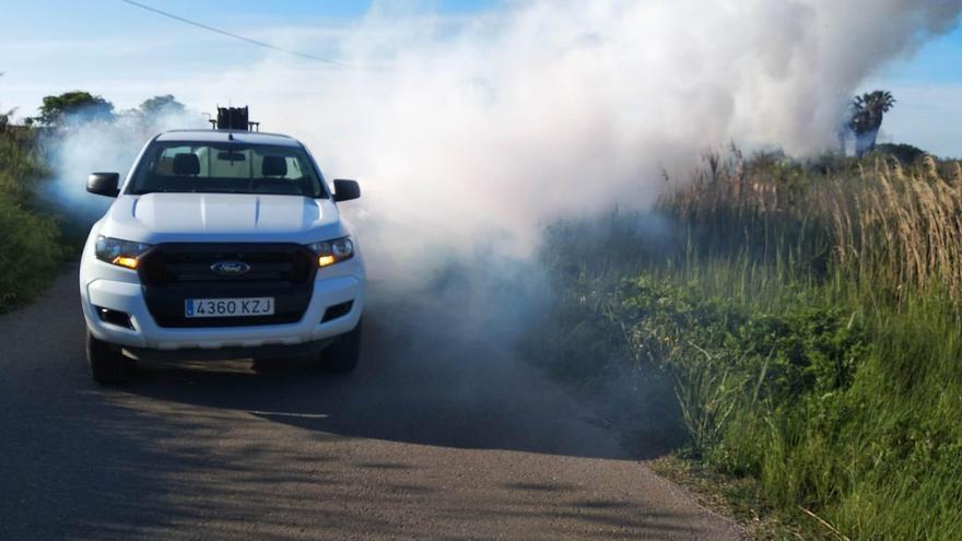 Castellón intensifica los tratamientos antimosquitos cara a la época estival