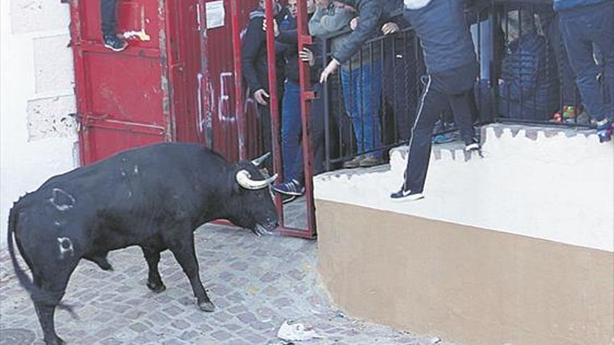 Castellnovo, Veo y Onda abren la temporada taurina provincial