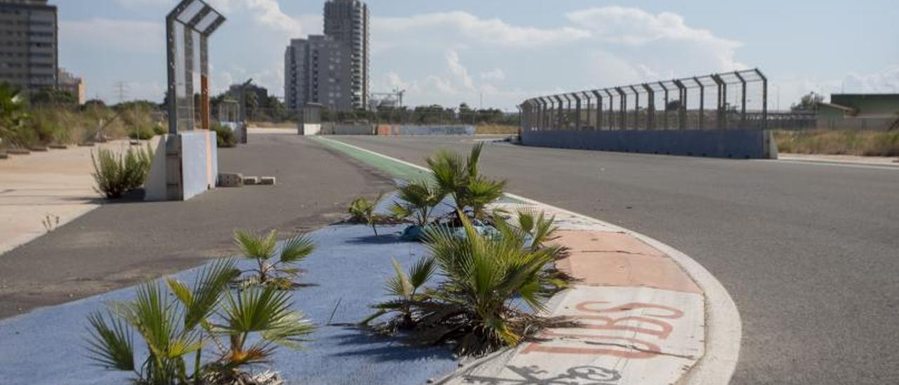 El circuito de F1 sin uso y  abandonado desde 2013.  f.b.