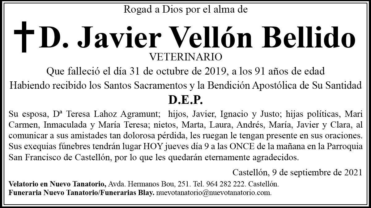 D. Javier Vellón Bellido