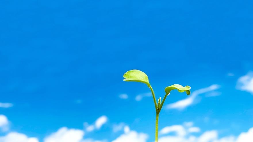 ¿De qué forma se implica Holaluz con los Objetivos de Desarrollo Sostenible para el 2030?