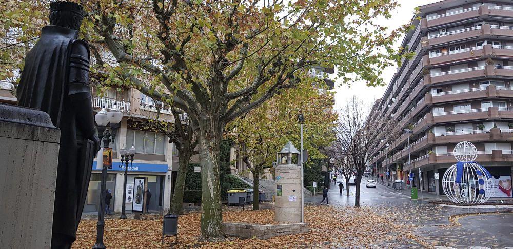 El Passeig de Manresa, després de la pluja, amb una catifa de fulles a terra.