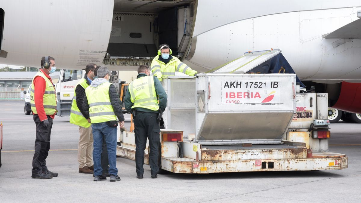 Arrival of a new shipment of vaccines at Tenerife North airport
