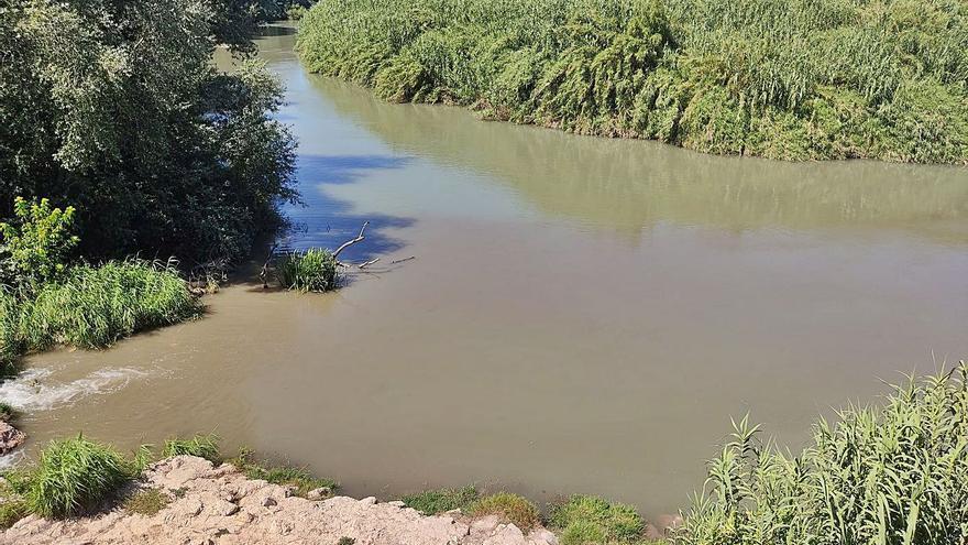 Alzira y Xúquer Viu alertan de nuevos vertidos que contaminan el Barxeta