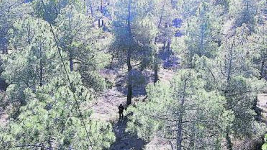 Medio Ambiente mejora  las charcas del Monte Raso de Villalpando