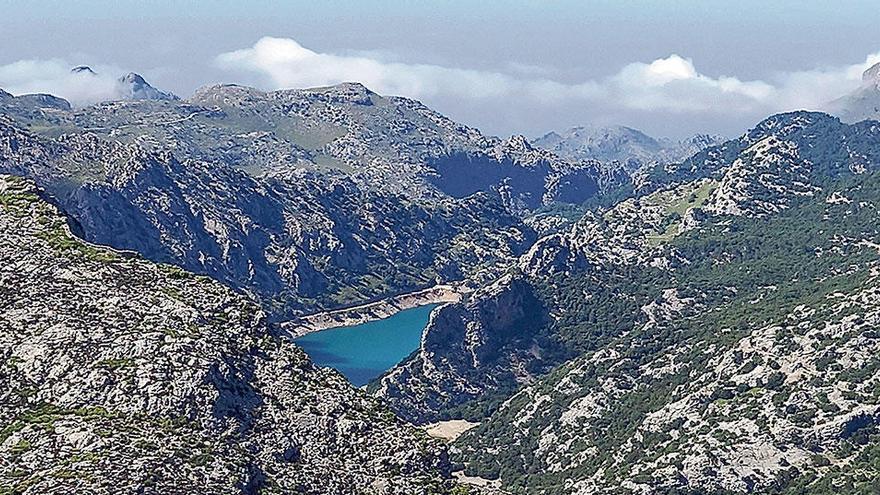 Tag der Dürre: So steht es um Mallorcas Wasserreserven