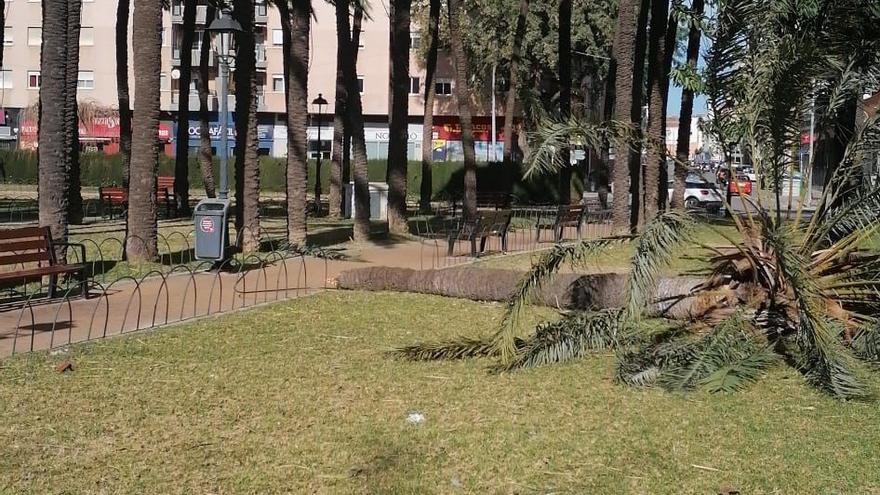Rachas de hasta 90 km/h obligan a cerrar en Dénia una plaza, el castillo y calles