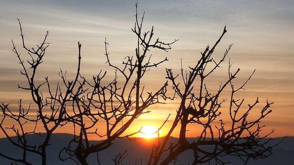 Cardona. Fotografia enviada per un lector en què veiem una albada amb molta humitat, boirines lleugeres i núvols prims per a aquesta bonica sortida del sol rere les muntanyes.