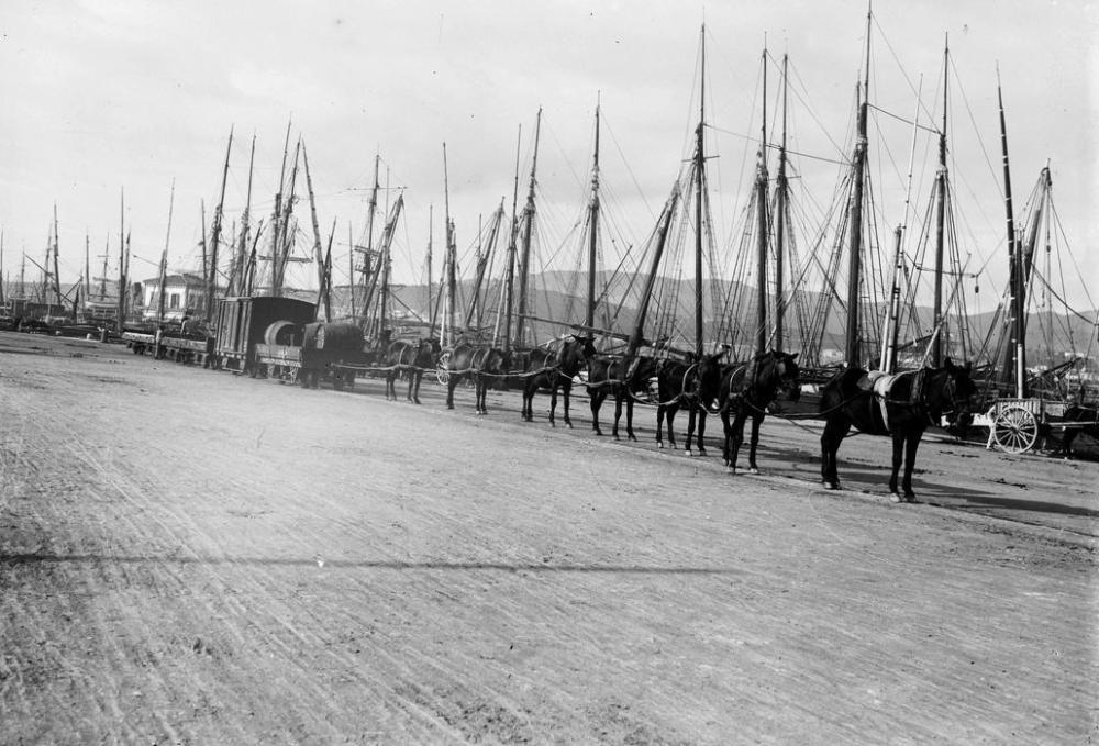 Reata de mulas tirando del tren del puerto.