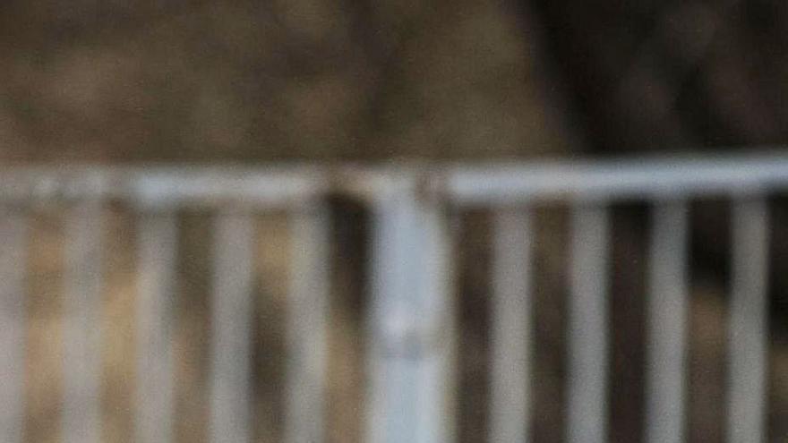 """""""Soy filósofo por Gustavo Bueno, con quien no reñí tras la ruptura por Irak"""""""