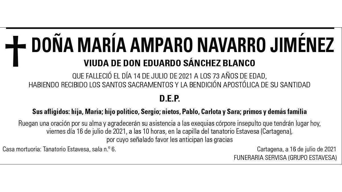 Dª María Amparo Navarro Jiménez