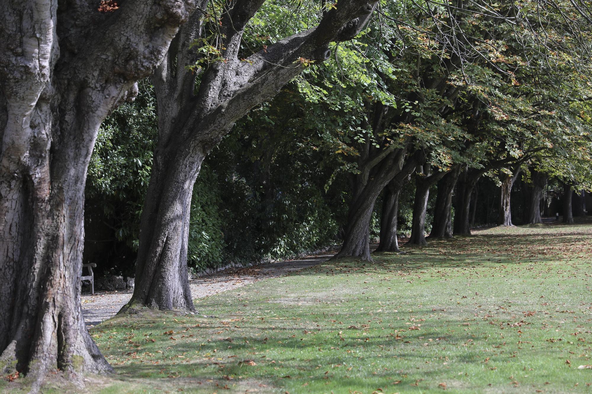 Jardín Evaristo Valle