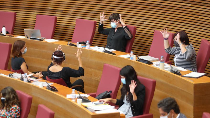 El comité de garantías avala el cambio de síndica en Podem pero critica las formas