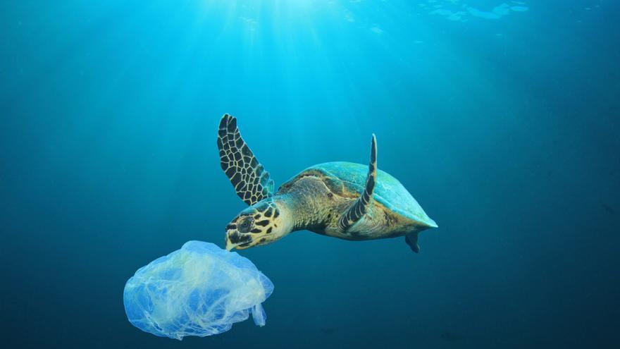 Los océanos y mares se ahogan