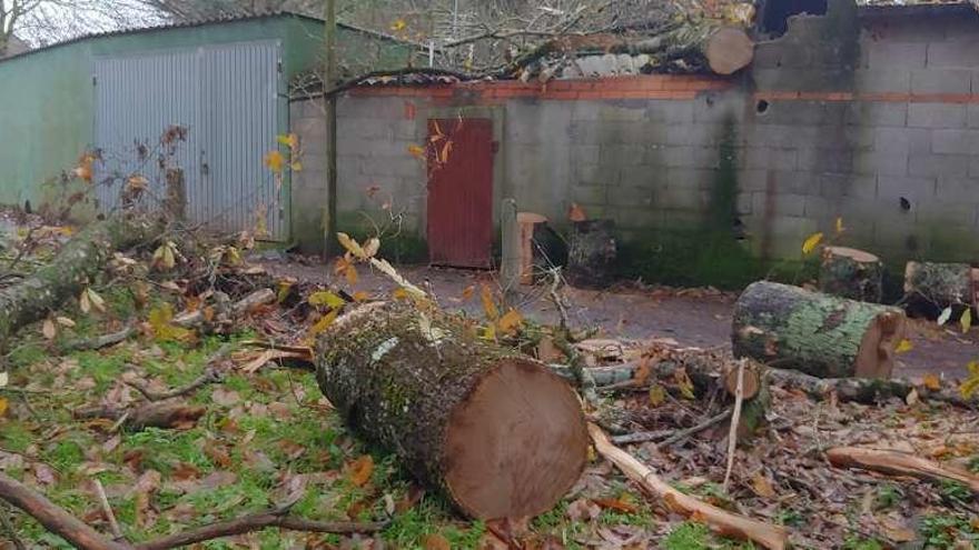 Un árbol se desprende sobre una construcción en O Montserrat