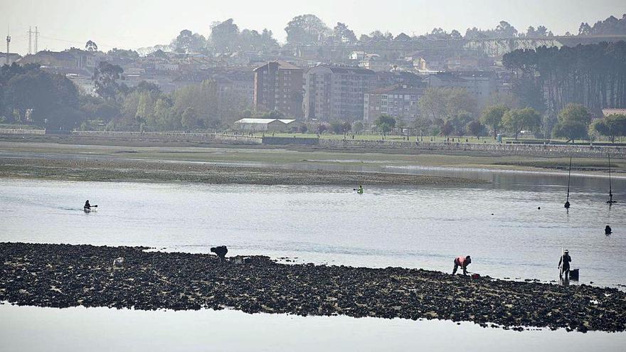 Los mariscadores recurrirán el proyecto de dragado de la ría para que garantice ayudas