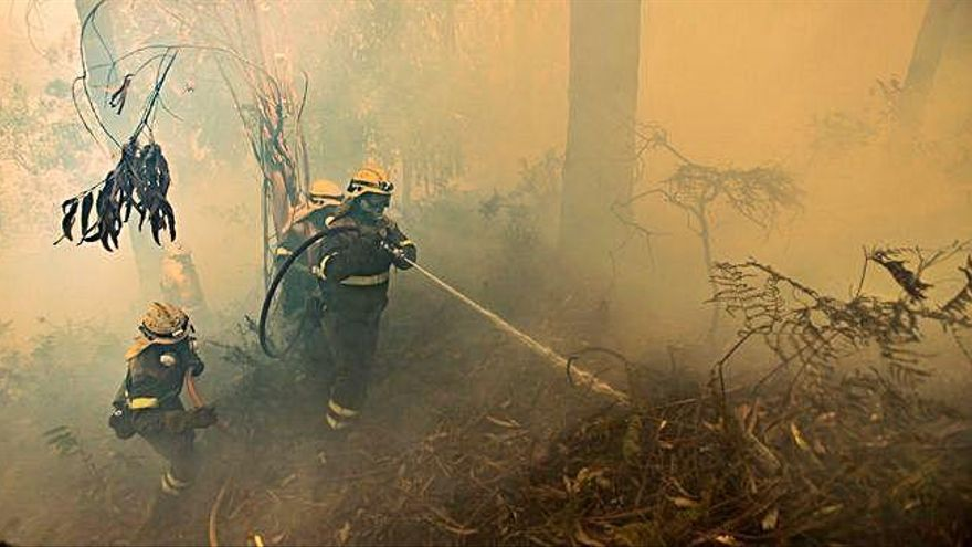 La Xunta identifica un millón de fincas de alto riesgo de incendios en 124 concellos