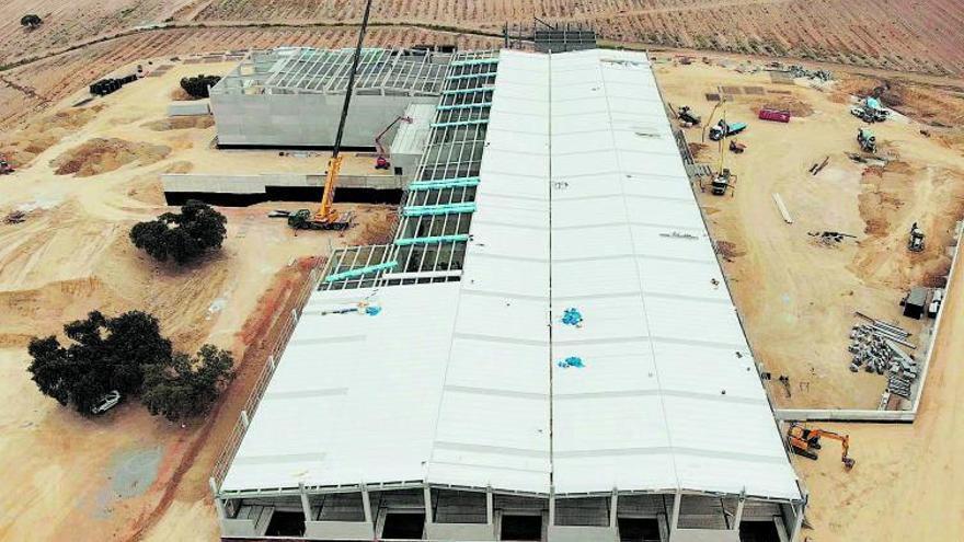 De Prado tendrá en Portugal una de las mayores almazaras del mundo