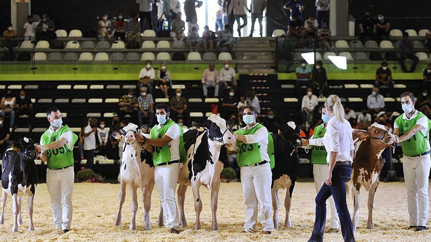 José Marcial, de Doade, imponse no concurso de conducción de tractores de Feiradeza
