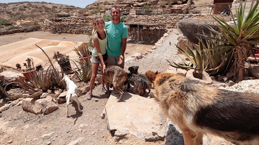 El santuario de los animales abandonados