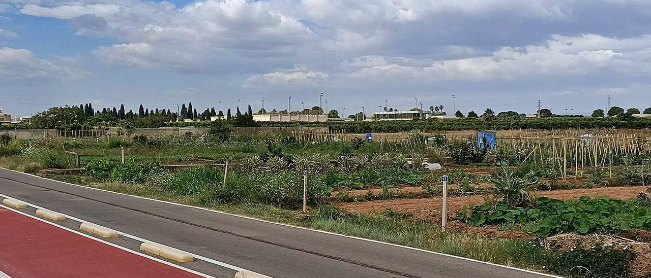 Terrenos donde se ubicaría la gigafactoría de baterías  en Almussafes.  levante-emv   LEVANTE-EMV