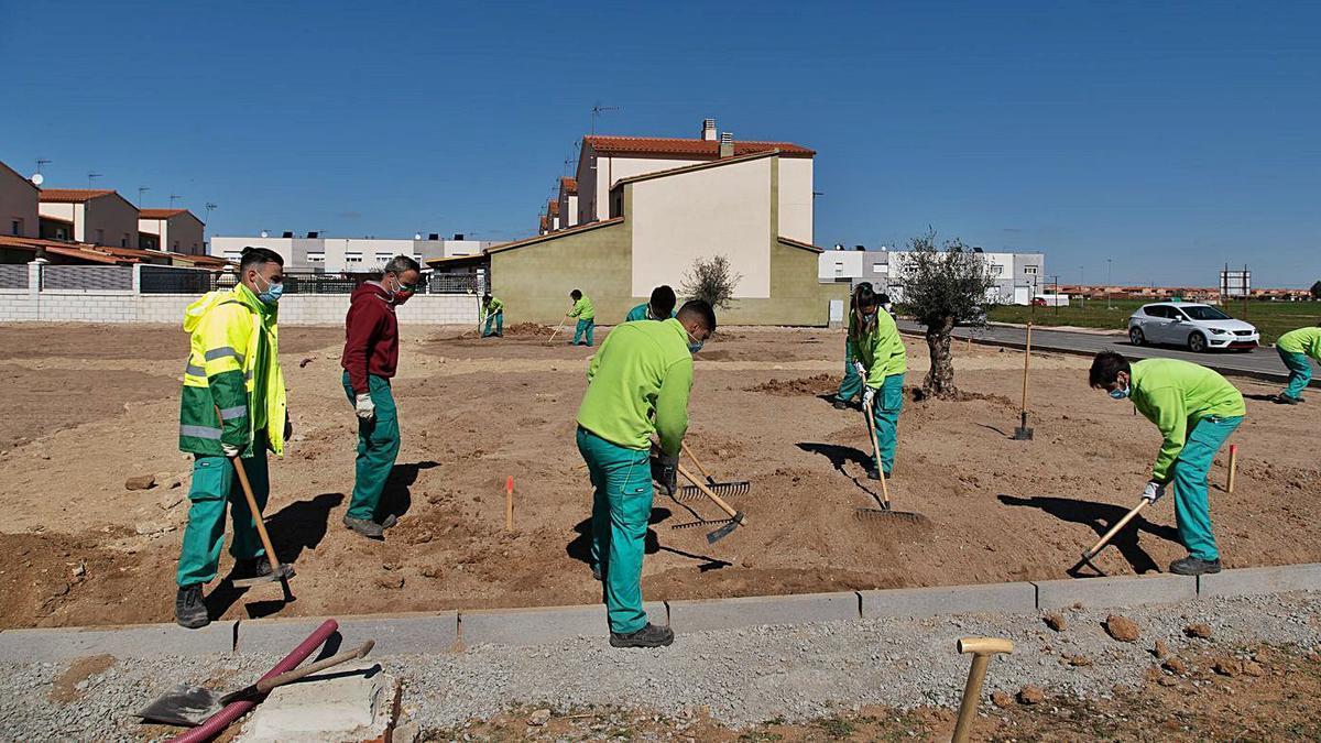 Los alumnos del programa mixto ya trabajan en la nueva zona de ocio en Moraleja. | José Luis Fernández