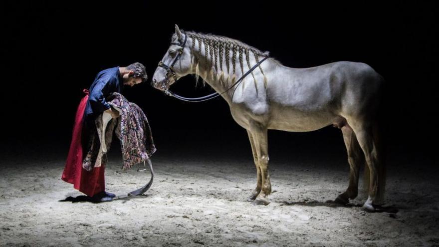 'Gompa': los caballos bailan la Ruta de la Seda en Alhaurín de la Torre