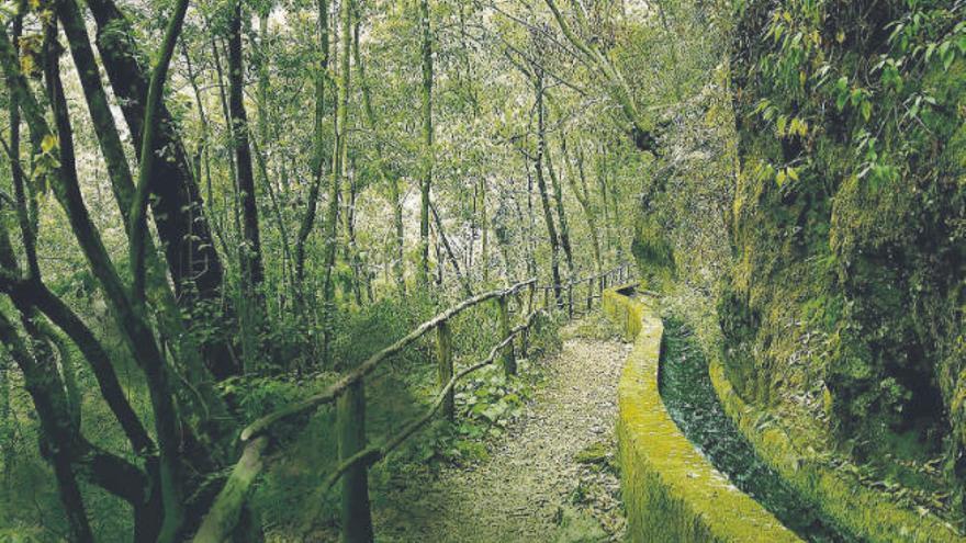 El Ayuntamiento y Cajasiete promoverán acciones para la conservación del medio ambiente