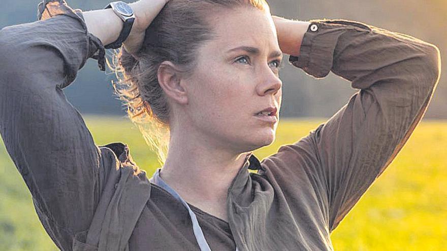 A Amy Adams el Oscar se le resiste