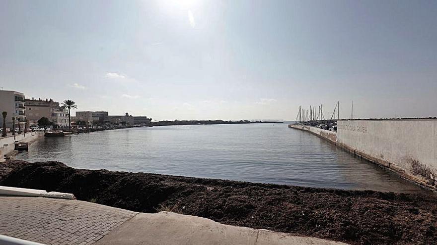 Ports IB se compromete a informar sobre la resolución de las alegaciones a sus proyectos