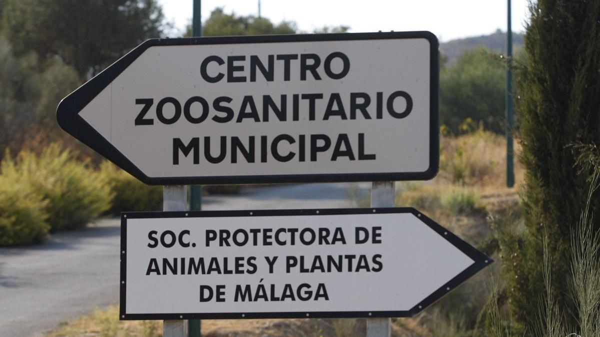 Señales viarias que indican cómo llegar a la Protectora de Animales y al Zoosanitario.