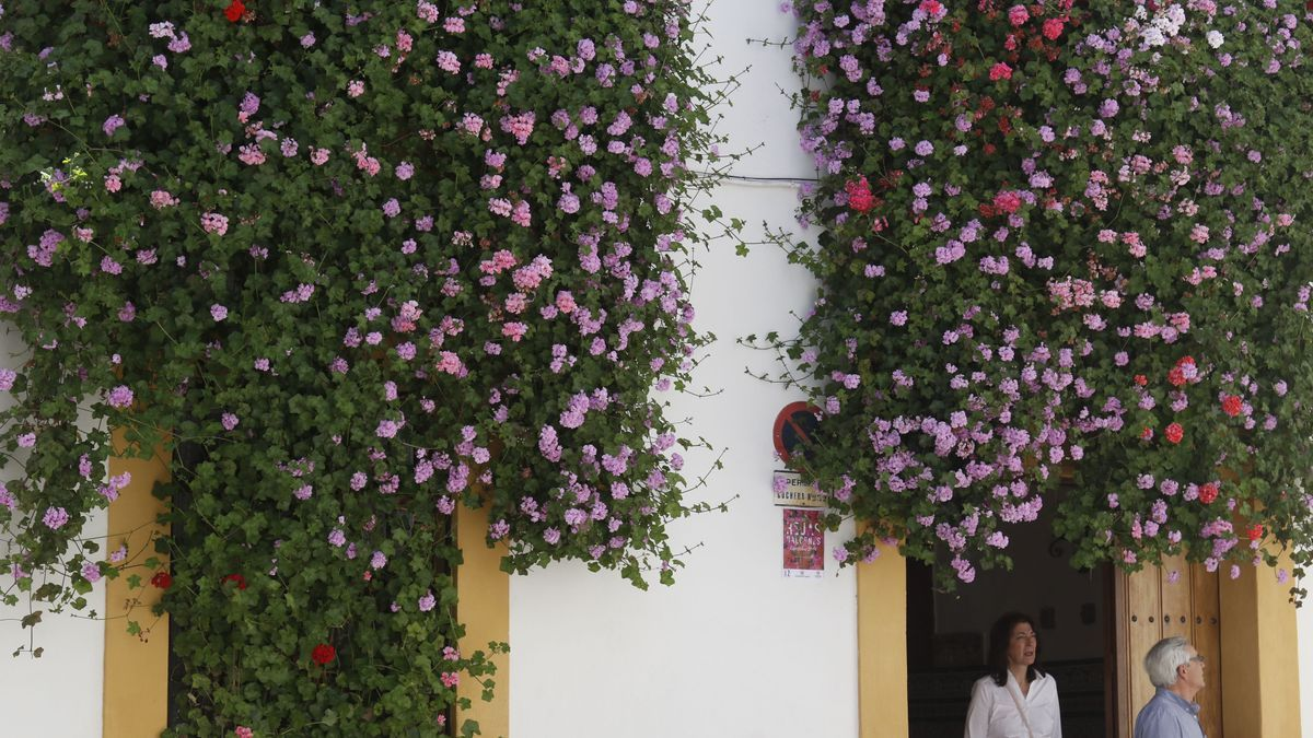 Fachada del número 9 de la calle Julio Romero de Torres, 9.