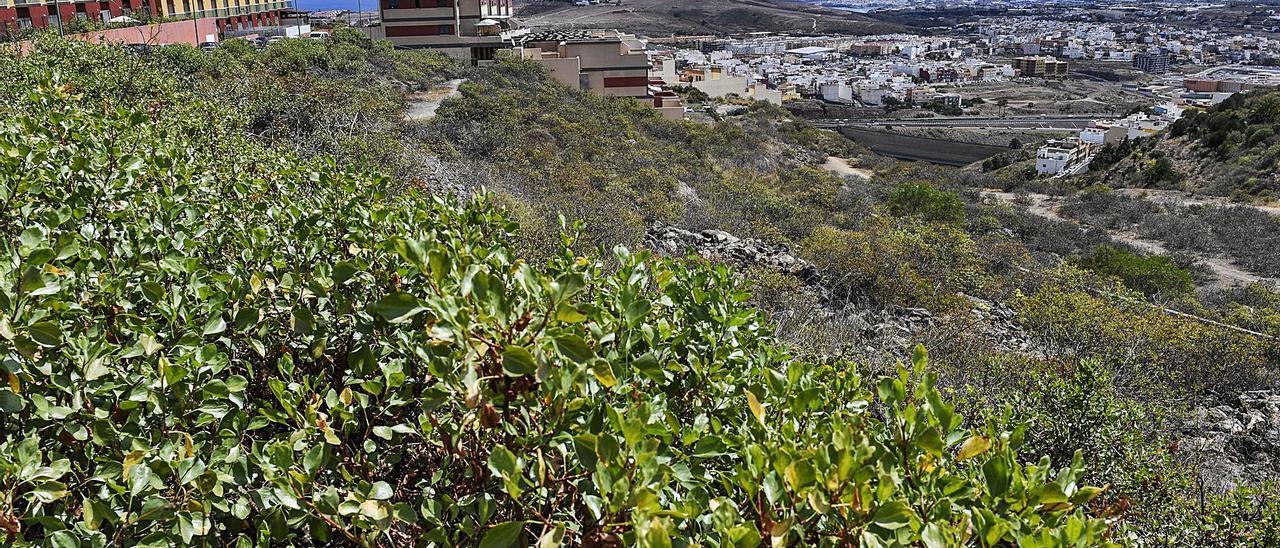 Vista desde Ciudad del Campo en una imagen de archivo.